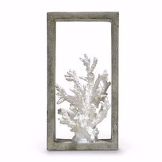 Picture of INDOOR/OUTDOOR FINGER CORAL SHADOW BOX