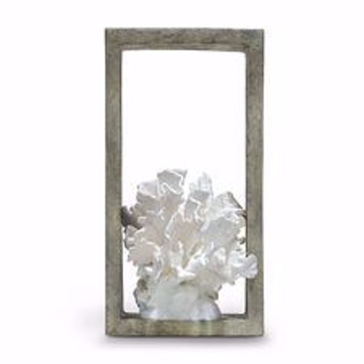 Picture of INDOOR/OUTDOOR LETTUCE CORAL SHADOW BOX